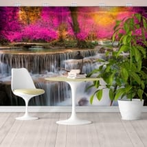 Wall murals with waterfalls in the forest