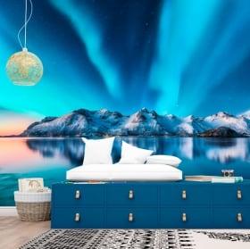 Vinyl murals aurora borealis norway