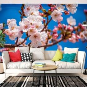 Wall mural japanese cherry blossom
