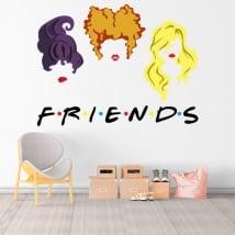 Vinyl stickers netflix friends