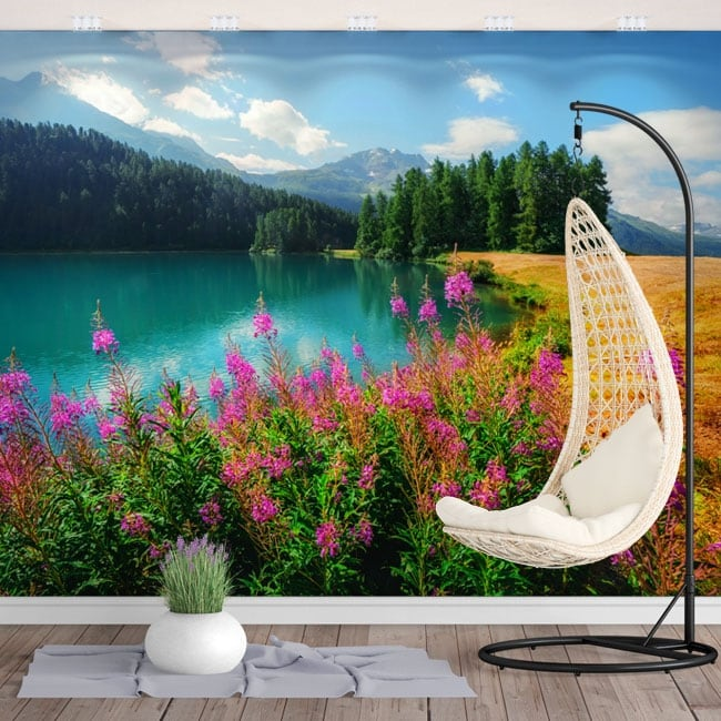 Vinyl murals lake champfèr