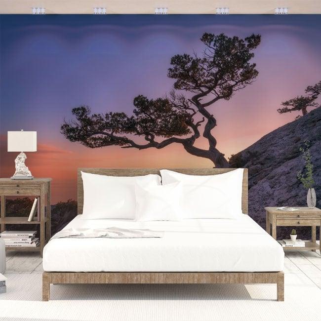 Vinyl wall murals tree and sunset