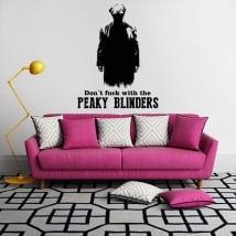 Vinyls tv series peaky blinders