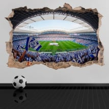 Vinyl and stickers 3d real society football stadium reale arena