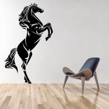 Decorative vinyls and stickers horse